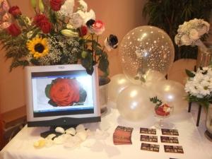 Feria de novios la duquesa 2012 (15)