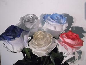 Rosa a domicilio liofilizada o eterna con filos de petalo de colores ok