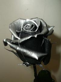 Rosa negra eterna con filos plateados ok