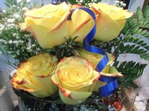 Rosas amarillas a domicilio en media docena (3)